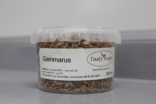 gammarus 280ml